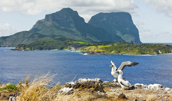 Lord Howe Island Adventure Couples and river cruise holiday experience