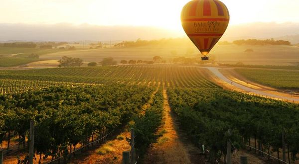 Barossa Valley, short cruise and Adelaide Tours, couples and self drive holiday experience